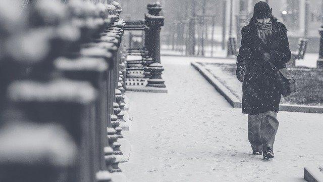 procházka ve sněhu.jpg