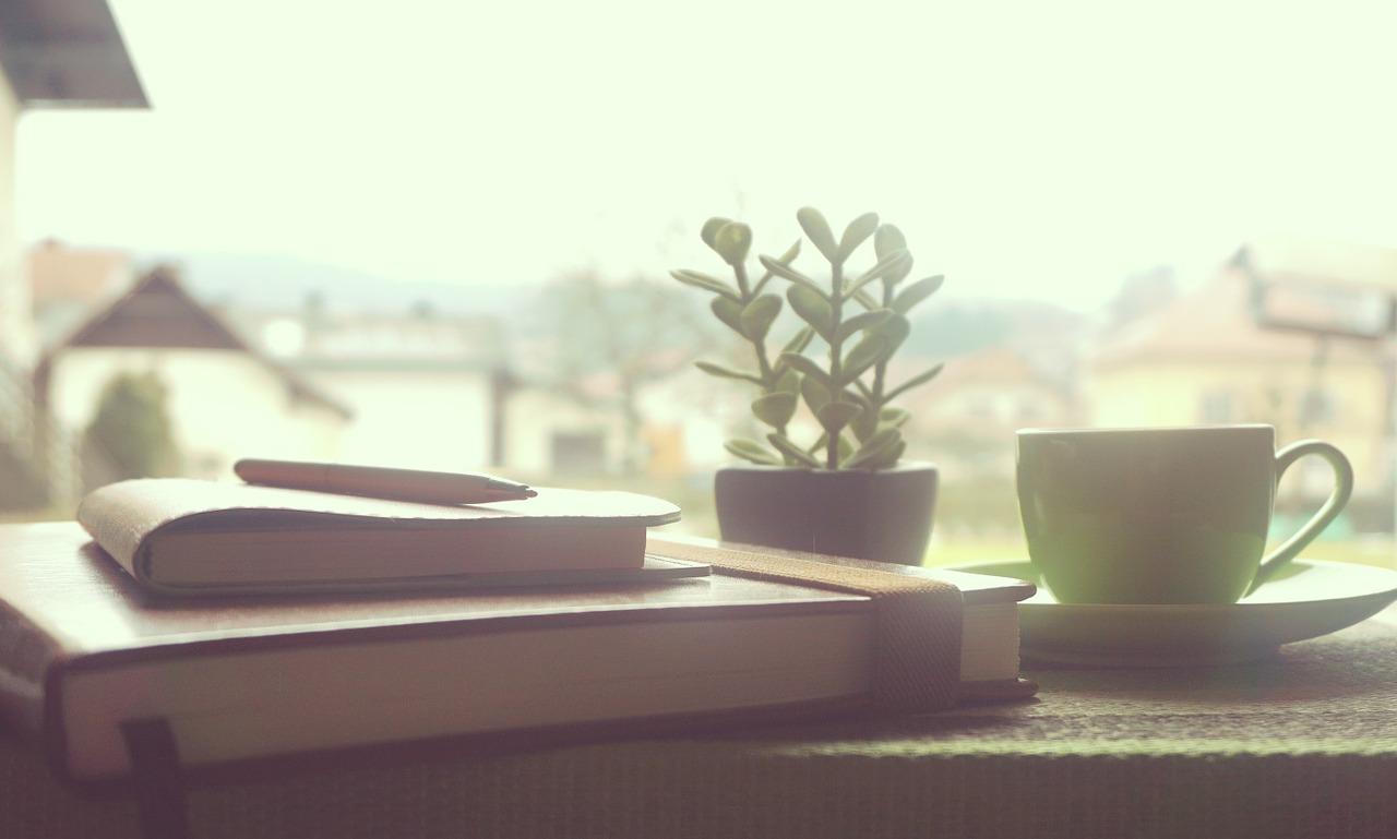 posezení nad knihou